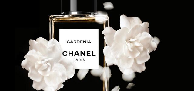Chanel, marca de lujo