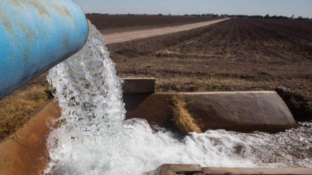 Imagen: Uso de agua en el campo mexicano, 25 de octubre de 2019 (Imagen: Especial)