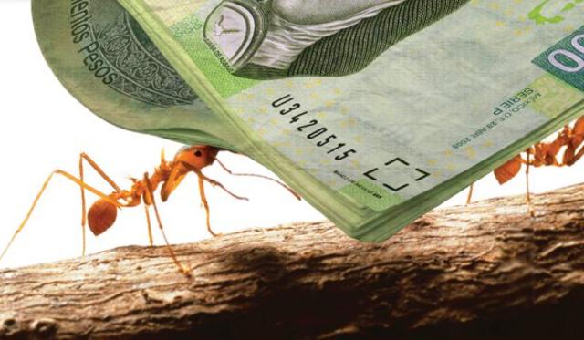 17 de diciembre 2019, Gastos hormiga, dinero, hormiga, billetes, efectivo, cambio, gastos, gastos hormiga