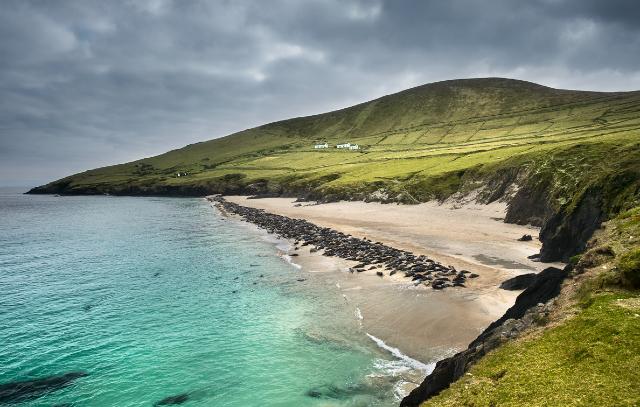 17 de enero 2020, Trabajo en Irlanda, Isla, Isla irlandesa, Irlanda, Naturaleza, Paisaje