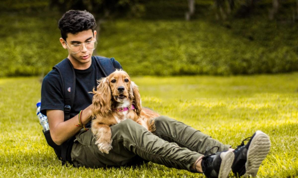 23 de febrero 2020, Cuidado de mascotas, Persona, Mascotas, Perro