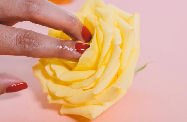 17 de febrero 2020, Oferta de empleo, Dinero, Trabajo, Juguetes Sexuales, Flor, Mano