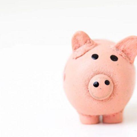 5 de febrero de 2020, alcancía de un cerdo (Imagen: Unsplash)