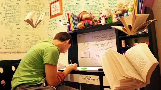 Universitario escribe su tesis (Imagen: pixabay)
