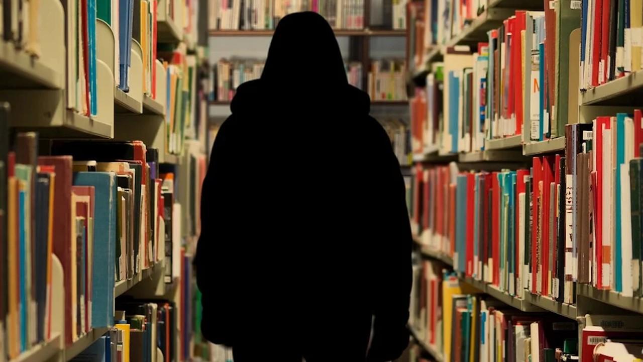 Menos extranjeros en universidades en Estados Unidos trae problemas financieros a las escuelas (Imagen: Pixabay)