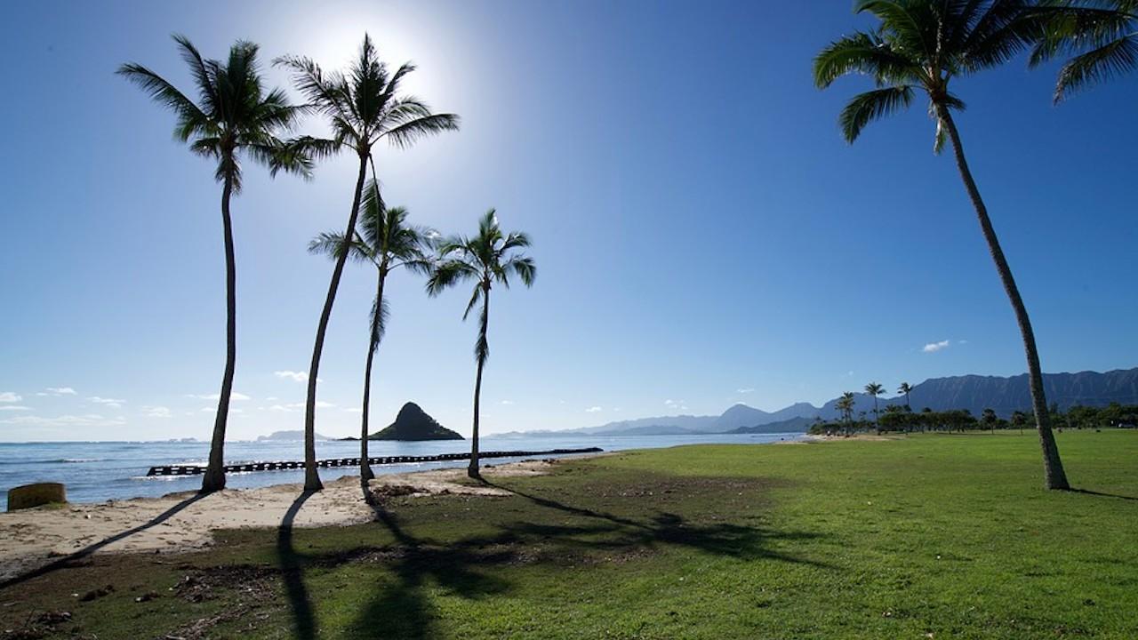 Playas en Hawai podrían ser ideales para el trabajo a distancia (Imagen: pixabay)