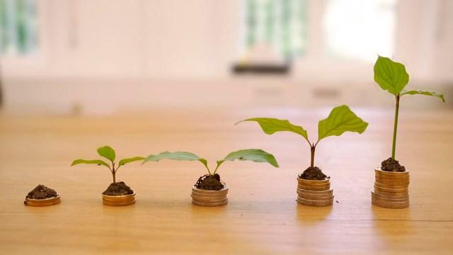 Consejos para ti inversión