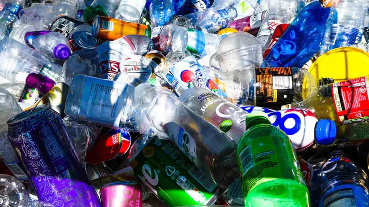 Recolección de basura por comida