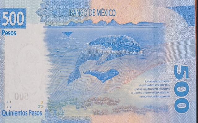 Este es el otro lado del billete de 500 pesos