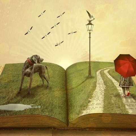 ¿Cómo puedo escribir y publicar mi propio libro?