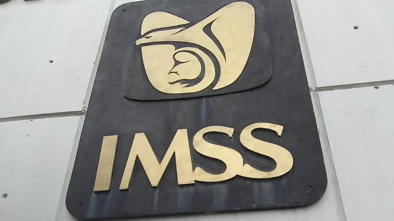 El NSS es un número de identificación que te brinda el IMSS