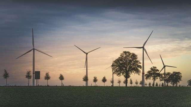 Afores serían afectadas por la reforma eléctrica de AMLO: REDD Intelligence