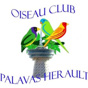 cropped-Logo-OCPH-1.jpg