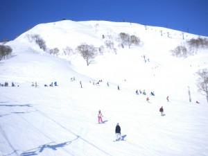筍平らゲレンデ バック筍山