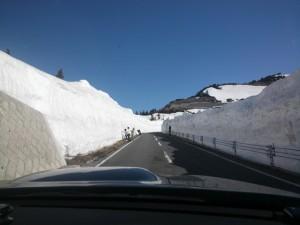 山田峠雪の回廊例年並