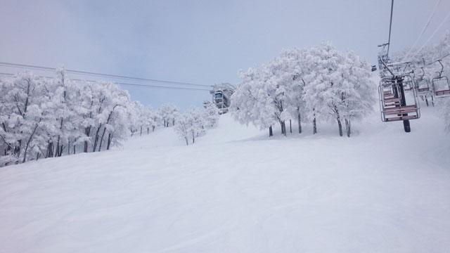 新雪40センチのエキスパート