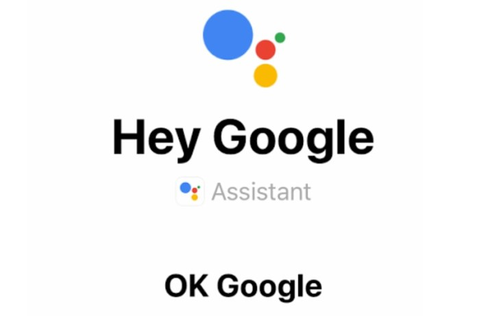 Delete Hey Google Assistant