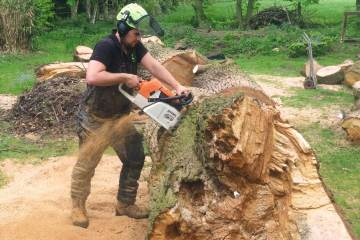 About our tree services Northwich Cheshire tree surgeons