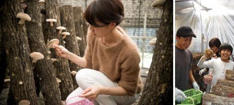 kihon10_o_kimurakinoko