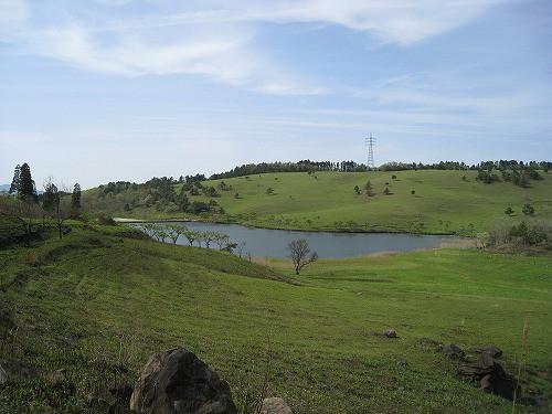 曽田の池、是非その目で!