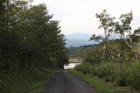 山道を抜けていくと、池が見えてきます。
