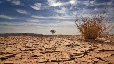 Photo of Fenômeno El Niño pode agravar seca no Ceará em 2019, avalia Funceme