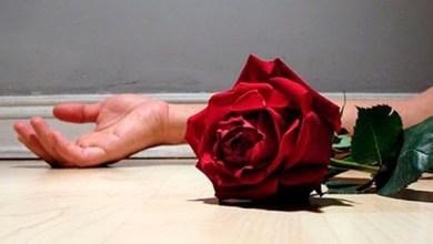 Foto de Casos de feminicídio no país põem em alerta governo e organizações civis