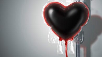 Photo of Aurora (CE): Hemoce realizará campanha de doação de sangue na próxima semana; saiba os detalhes