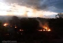 Photo of Milagres-Ce: Incêndio atinge às margens do Rio dos Porcos. Acidente ou proposital?