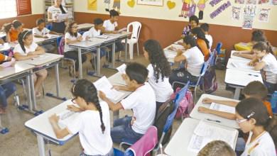 Foto de Municípios cearenses lideram ranking nacional em qualidade de oportunidades educacionais