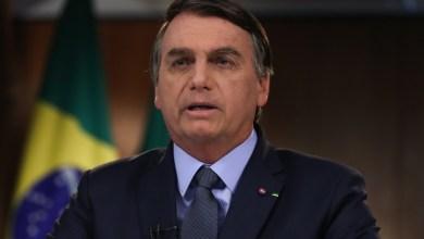 Foto de País é líder em conservação de florestas afirma Bolsonaro, em discurso a ONU