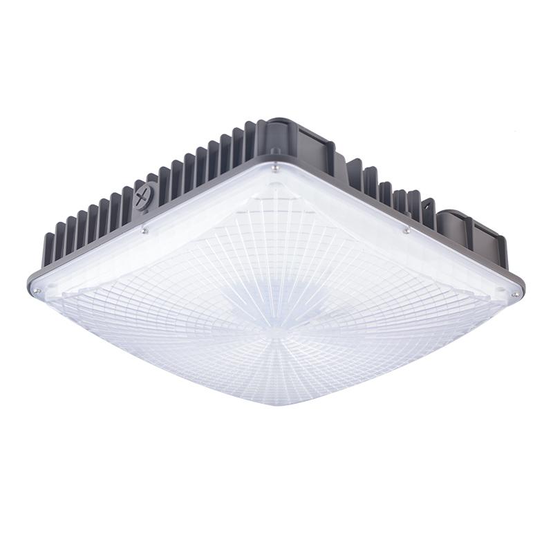 Type 100 Watt Sodium Lamp Outdoor Canopy