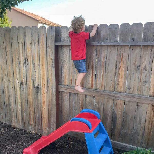 two year old climbing the fence