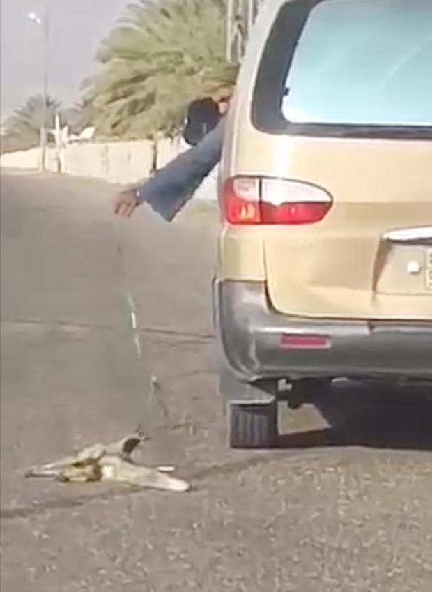 صورة من الفيديو المتداول. (عكاظ)