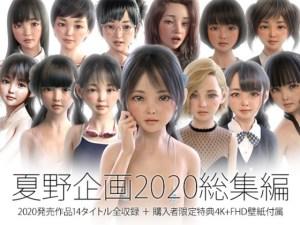 『夏野企画 2020総集編 全14本セット』10代美少女が集まる会員制グラビアサイトでVIPユーザーだけが見れる裏コンテンツをまとめました♪