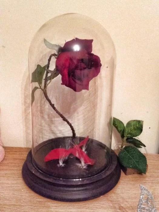 Chico recrea la rosa encantada de la bella y la bestia