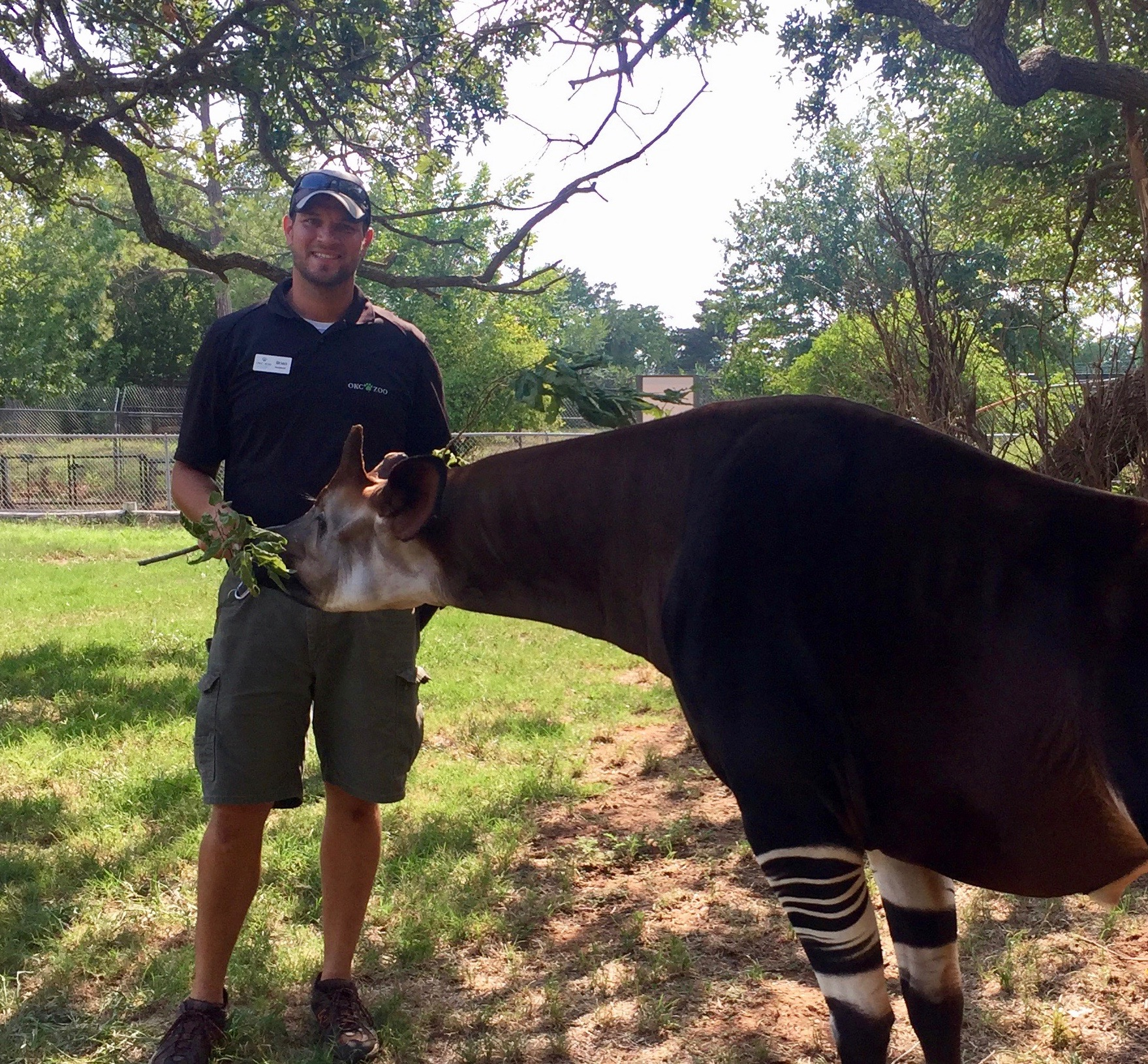 Our Stories  National Zookeeper Week