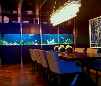 Dining Room Freshwater Aquarium