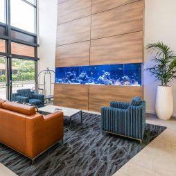 Brisbane Australia Reef Aquarium / 144″x36″x36″ Lobby Aquarium
