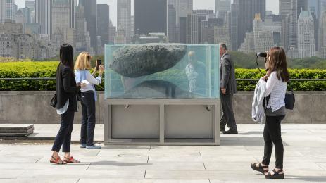 custom acrylic aquariums with invisible seams
