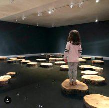 New York museum pond installation