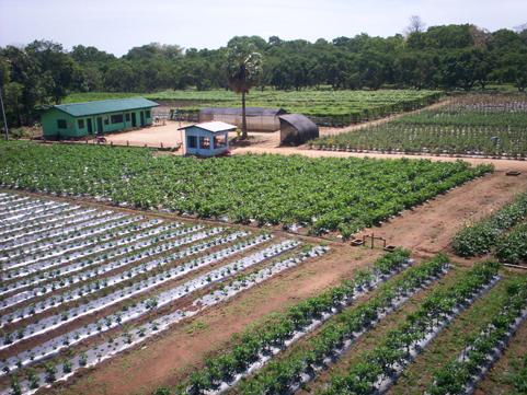 oklahoma farm report - workshop