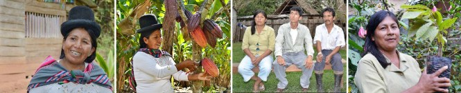 Cocoa from Bolivia