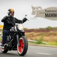 Kawasaki VN 800 MaMMoth, bobber by Vladimir | Ep 4