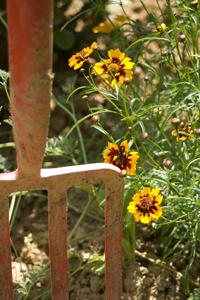Prekopavanje vrta: poskrbite za kvalitetna tla