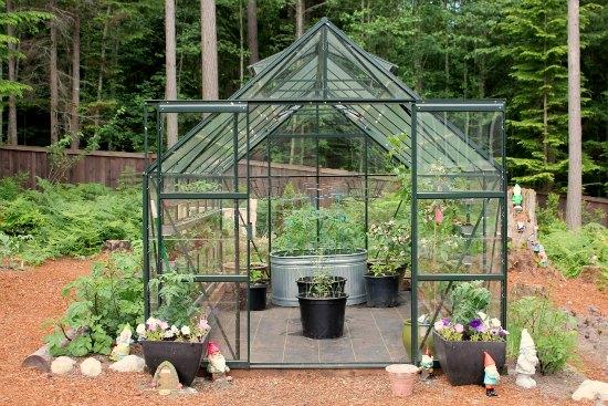 Kako najbolje izkoristimo rastlinjak