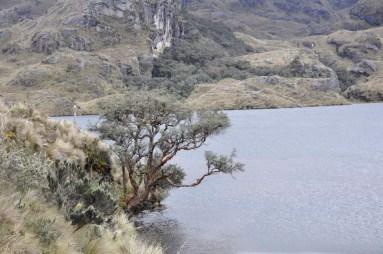 Parc nacional Cajas, près de Cuenca