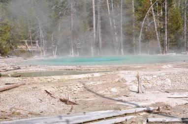 USA 635 Yellowstone