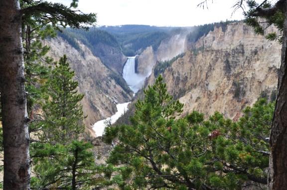 USA 661 Yellowstone