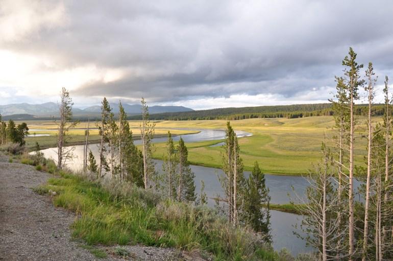 USA 665 Yellowstone